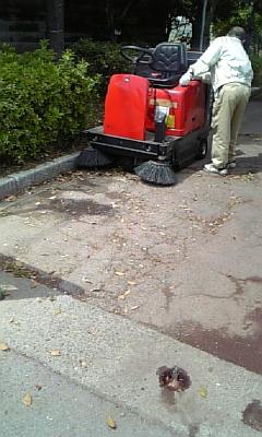 公園を掃除する人