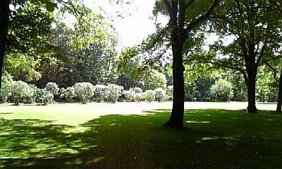 植物園特集②