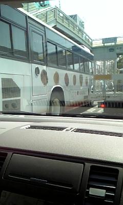 梅干しバス